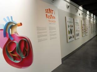 Imagen de la exposición 'Sent I Respira en Valencià. Del 17 enero-14 febrero 2014
